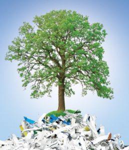 Consultanta in reciclare